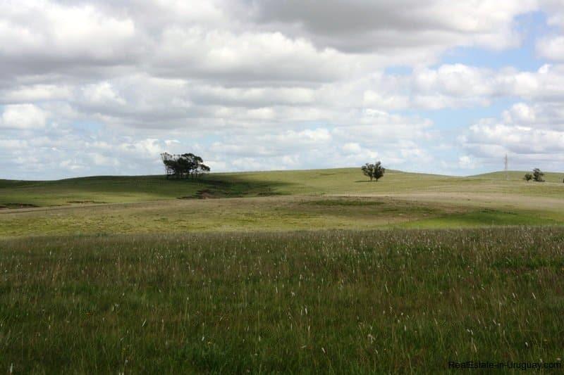 Hängeleuchte Modern modern small ranch on 5 ha estate in uruguay