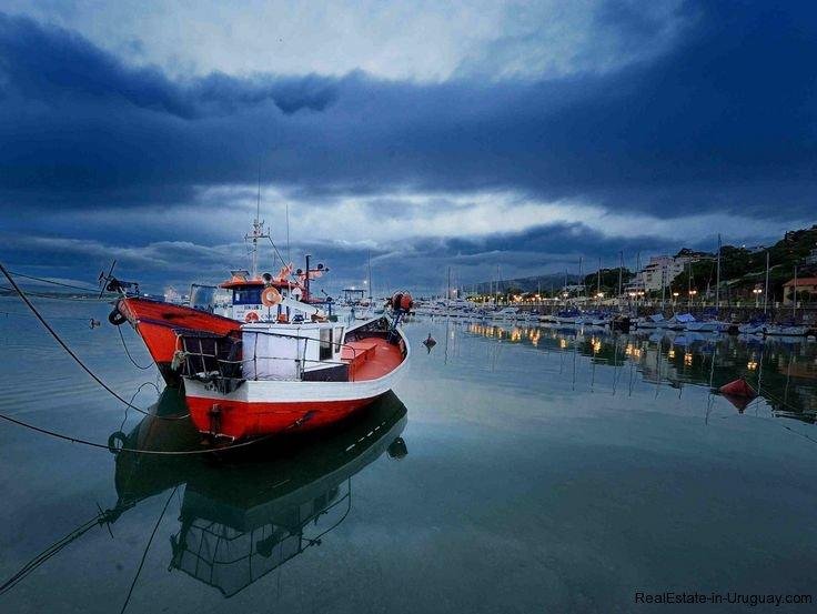 Fisherboats-in-Piriapolis-Uruguay