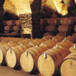 La-Cava Juanico Winery Uruguay