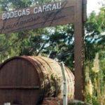Bodegas Carrau Uruguay